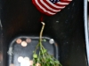 photo-2-american-flag-and-pennies